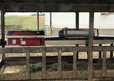 Buschur Dairy-Jamesway Belt Feeder 1