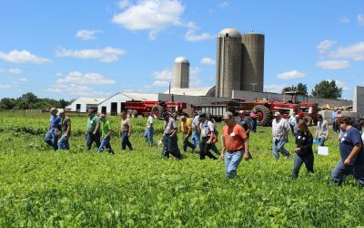 July Field Days You Don't Want to Miss